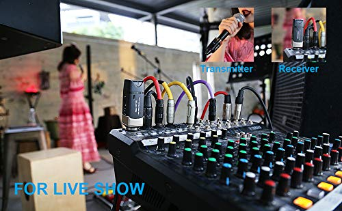 Kadence Xvive U3 Wireless Microphone System, 2.4GHz